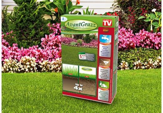 Poznaj niezawodne sposoby na mocny trawnik i sprawdź, dlaczego warto wykorzystać odporne nasiona trawy!